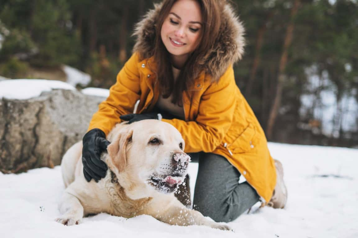 Young smiling woman in yellow jacket with big kind white dog Lab